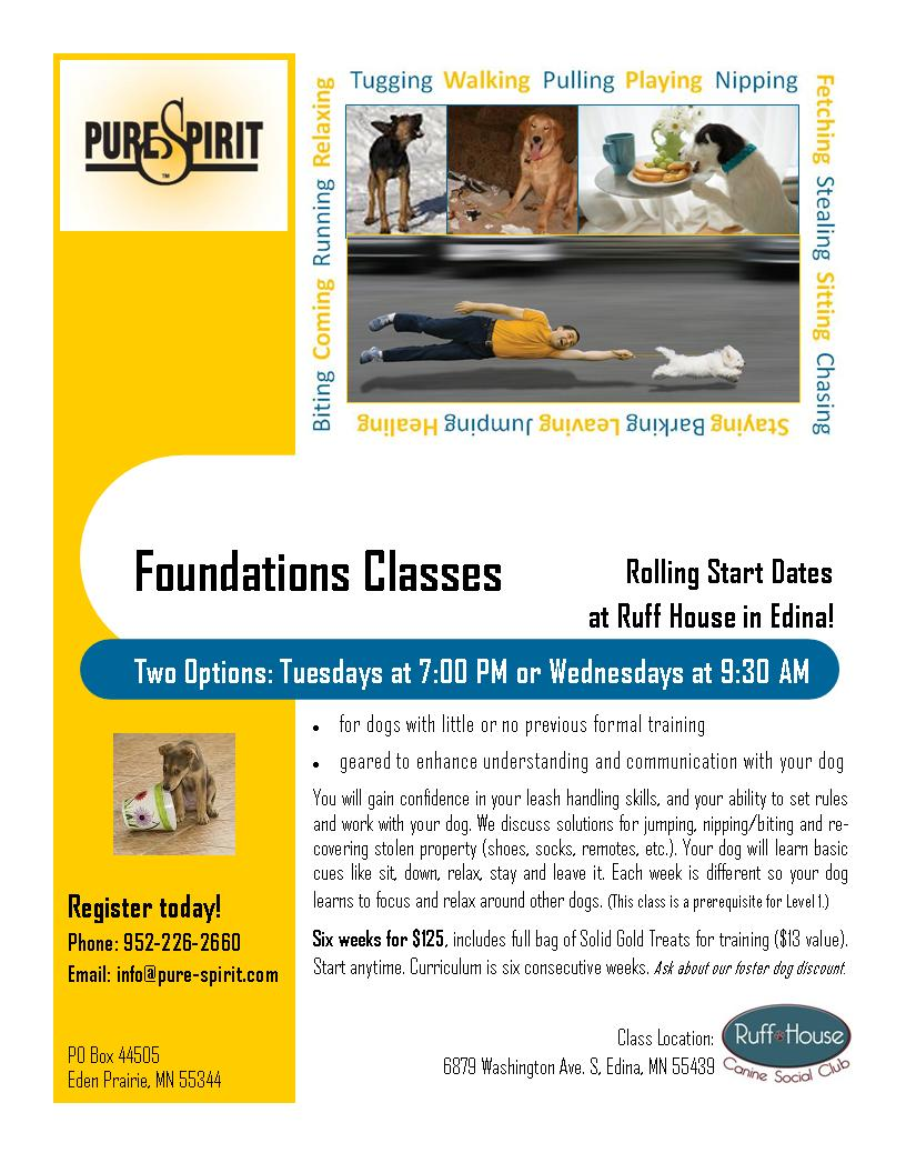 Discount for Foster Dogs - Training in Edina